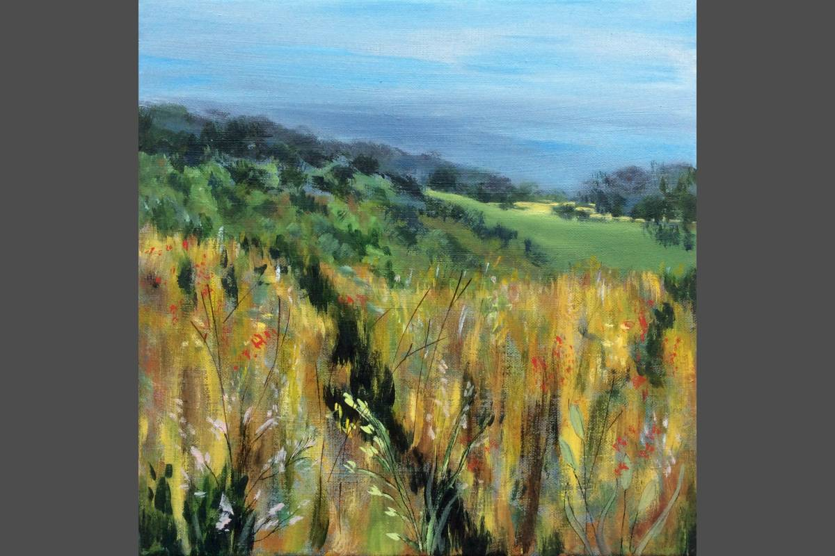 Somerset Meadows - Jill Preston