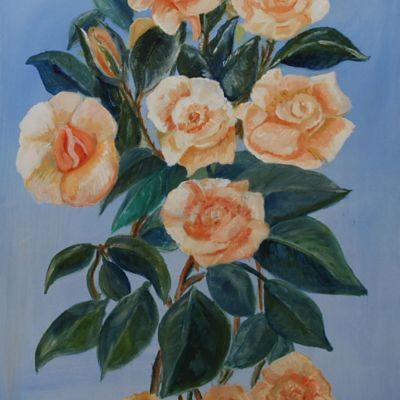Golden Anniversary Roses - Susan Ball
