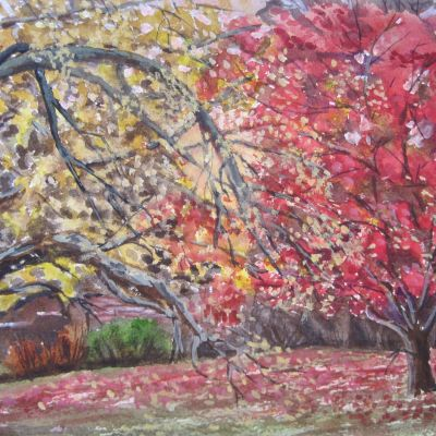 Autumn at Stourhead - Elizabeth Webster