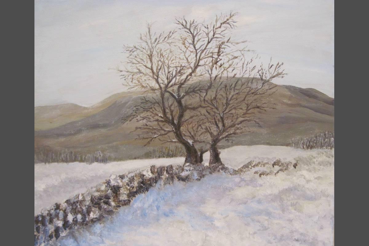 January Snow - Carol Steele