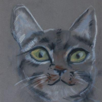 Kitten - Susan Ball
