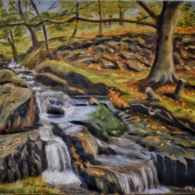Mountain Stream Snowdonia - Margaret Geatches