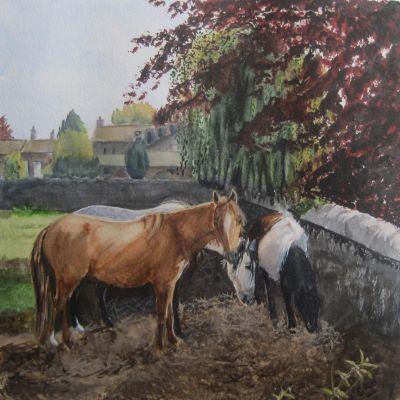 Any more Hay? - Elizabeth Webster