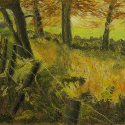 Autumn Woodland - Elizabeth Webster