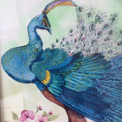 Peacock - Yvonne Shayler