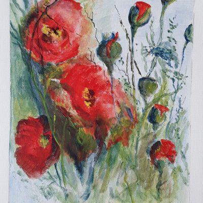 Poppies - Don McKechnie