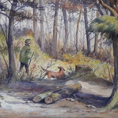 Woodland Walk - Don McKechnie