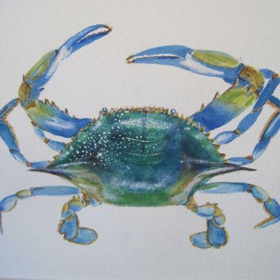 Blue Crab - Elizabeth Webster