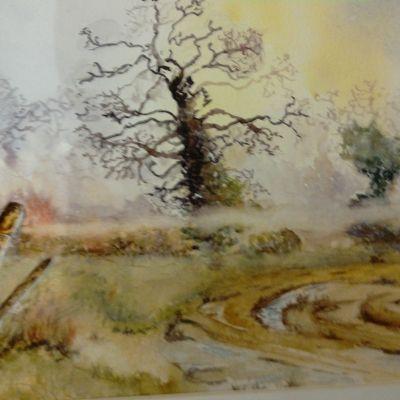 Somerset Levels - Edith Carter