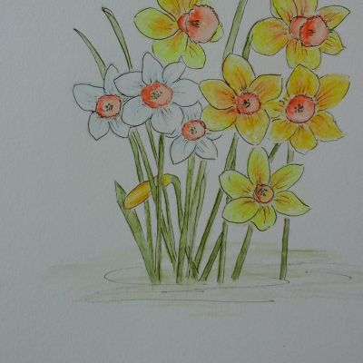 Easter Competition - Jenny Nicholls