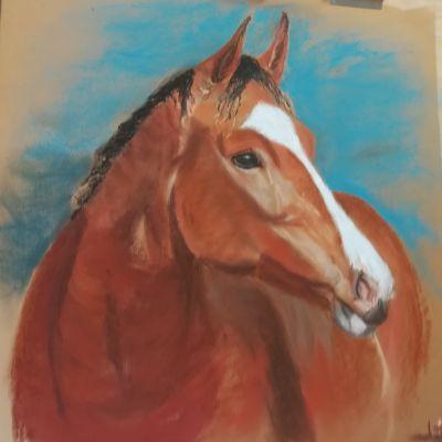 Horse In Pastel  - Carol Grimshaw
