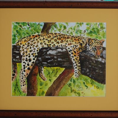 Lazy Leopard - Sue Ball