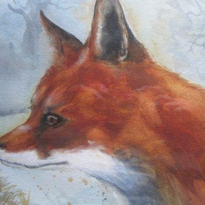 The Early Fox - Elizabeth Webster