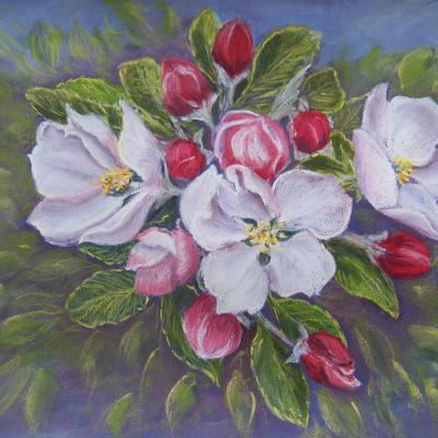 Apple Blossom - Margaret Geatches