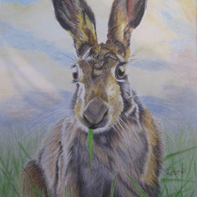 Chewing Things Over - Dora Carrington (Coloured Pencil)