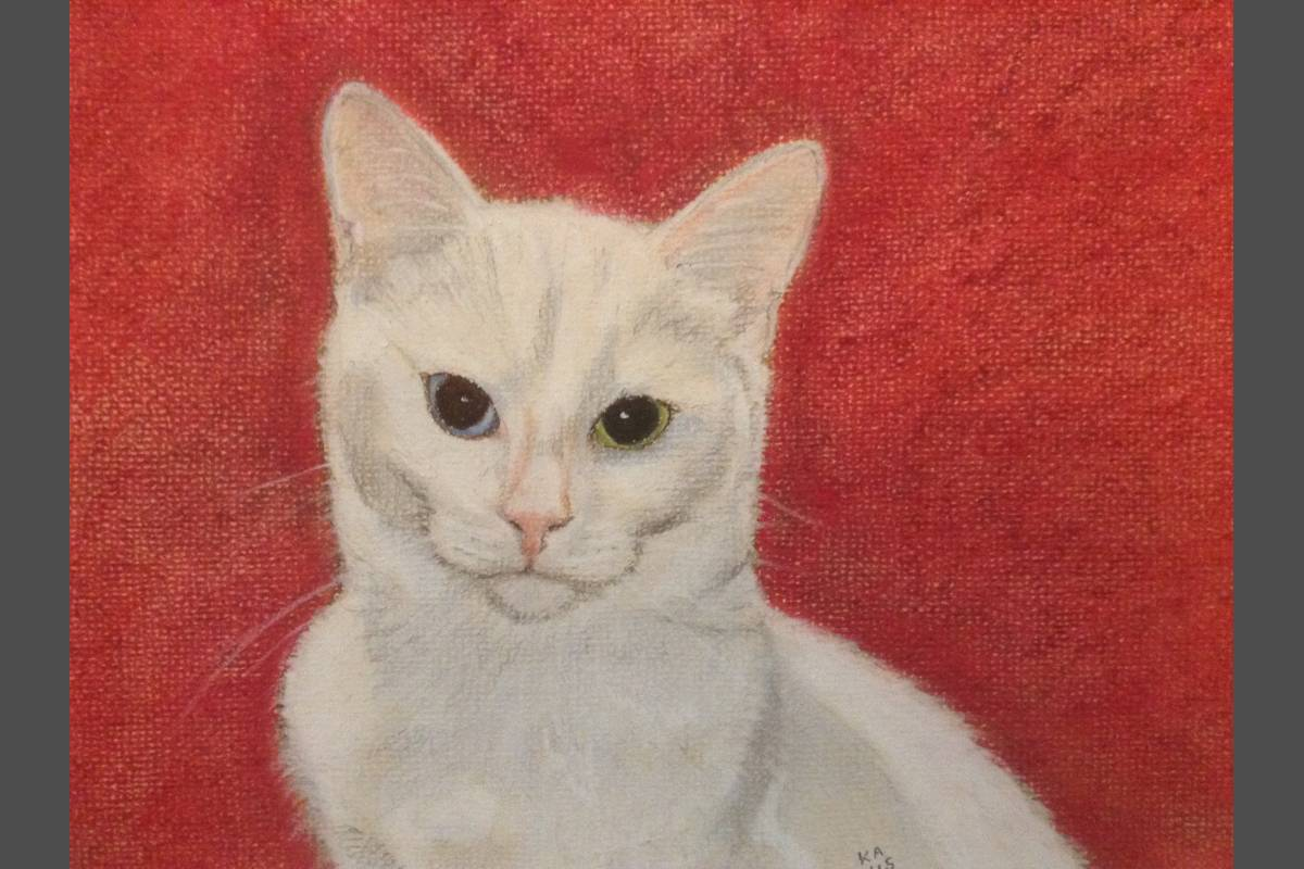 White Cat - Kate Asell