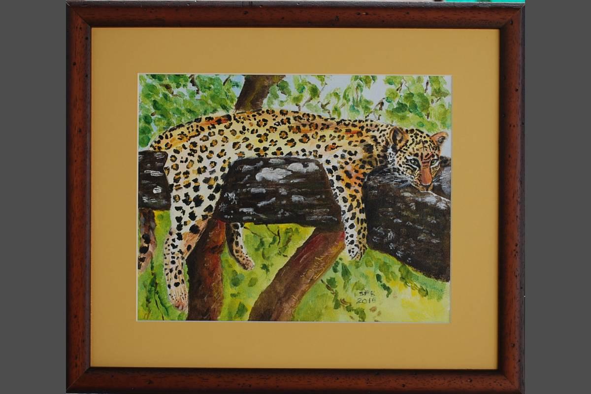 Lazy Leopard - Sue Ball