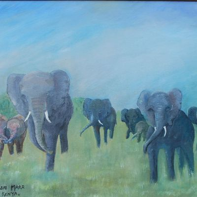 Elephants - Susan Ball