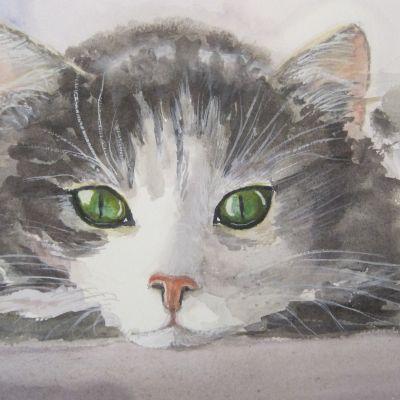 MiMi's  Kitten - Elizabeth Webster
