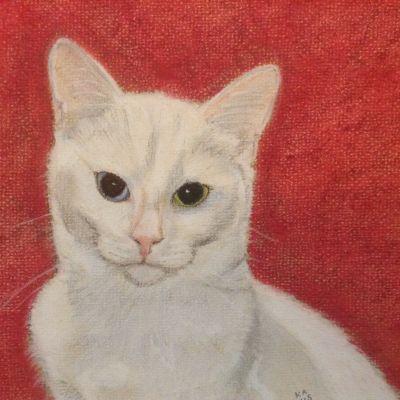 White Cat - Kate Antell