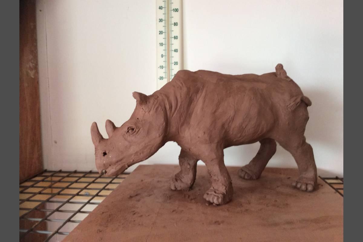 Rhino  in Earthenware - Yvonne Shayler