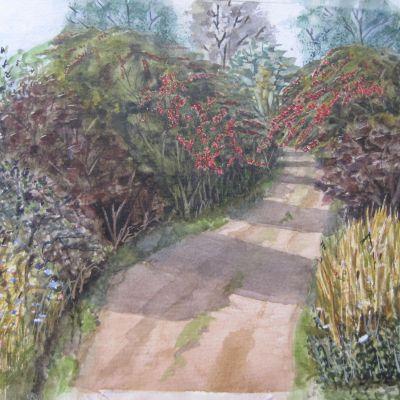 Hawthornes on Ham Hill - Elizabeth Webster