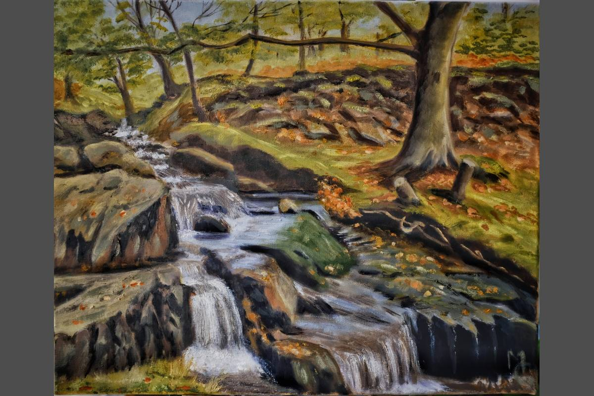 Mountain Stream Snowdonia - Margaret Geatches