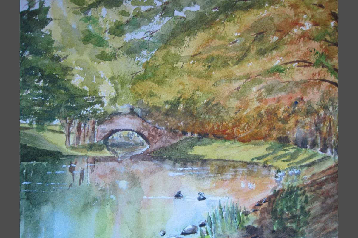 Devon Bridge - Elizabeth Webster