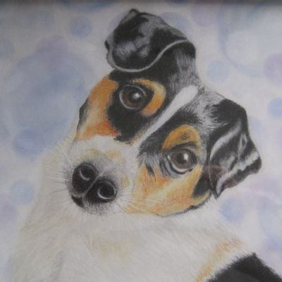 Martina s Dog - Dora Carrington