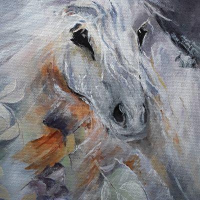Wild Pony - Don McKechnie